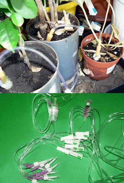 Автополив комнатных растений. Автоматический полив вазонов своими руками